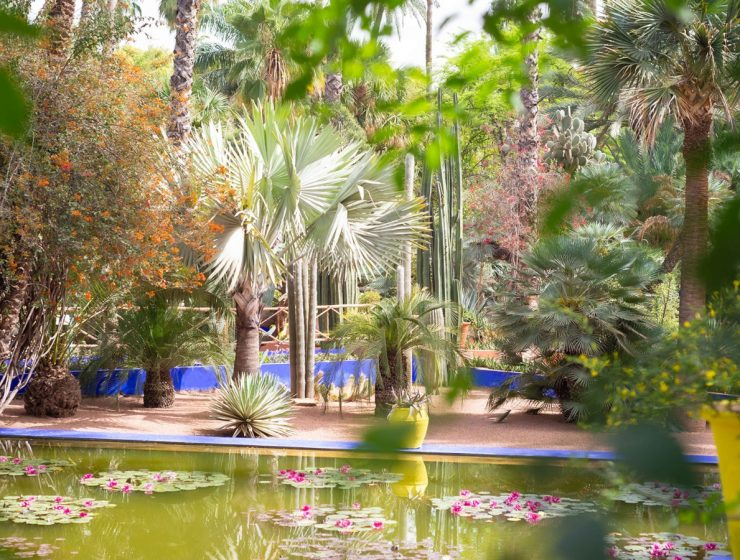 Madison Cox Associates: Stunningly Original Gardens Around The Globe